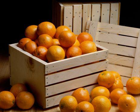 Desde Naranjasdemihuerta.com nos complace anunciar que nos hemos estrenado en la web de venta online Hermeneus. Puedes encontrarnos en el siguiente enlace: http://www.hermeneus.es/naranjasdemihuerta