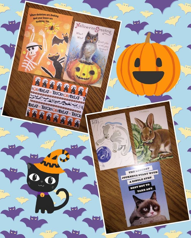 Fantastic Halloween cards and cute animal cards!
