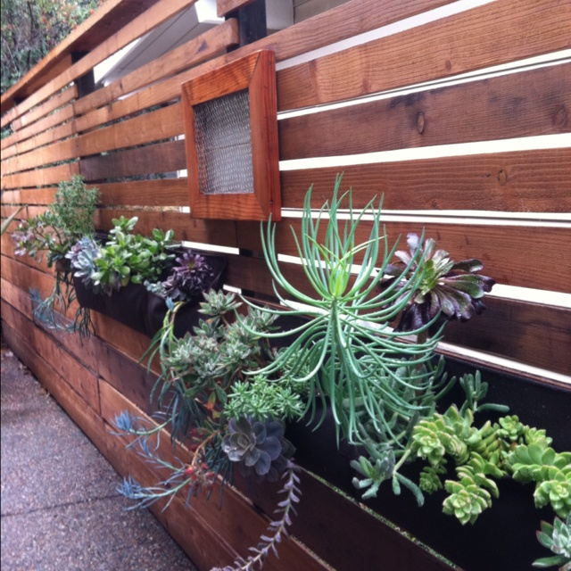 Hanging Wall Garden Diy : Images about hanging garden ideas on
