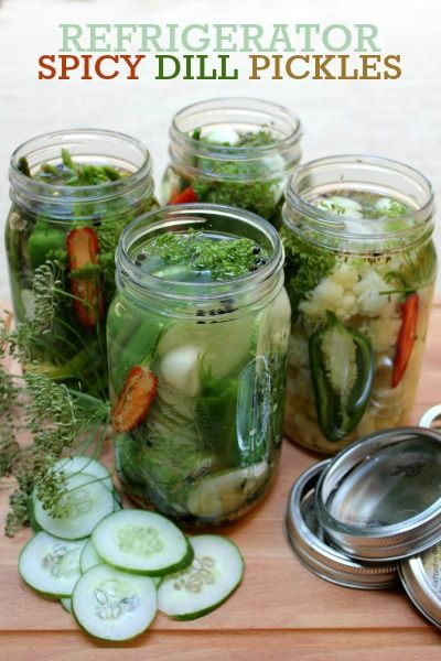 Spicy Refrigerator Dill Pickles -- Simple way to preserve and enjoy almost any vegetable!                                                                                                                                                                                 More
