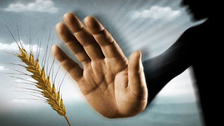 A gluténmentes igazság! Az emberek 29%-a nem tudja, hogy gluténérzékeny! | Peak Man