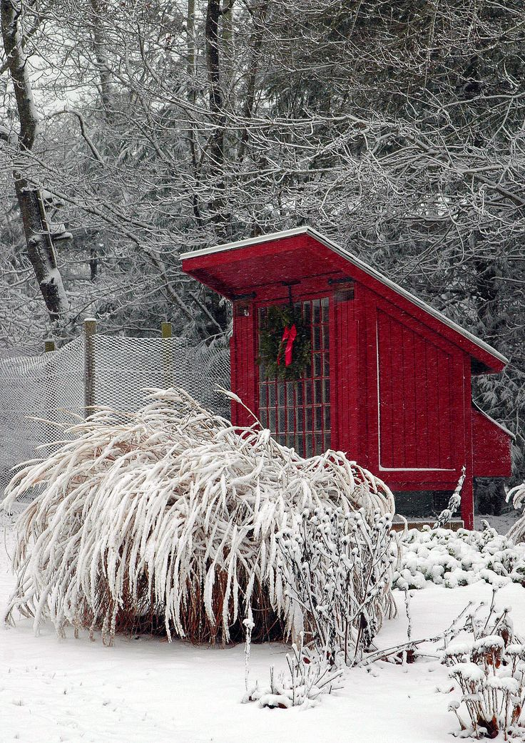 The Little Red Hen House: Winter Snow, Red House, Chicken Coops, Winter Wonderland, Christmas, Children, Gardens, Hens House, Little Red Hens