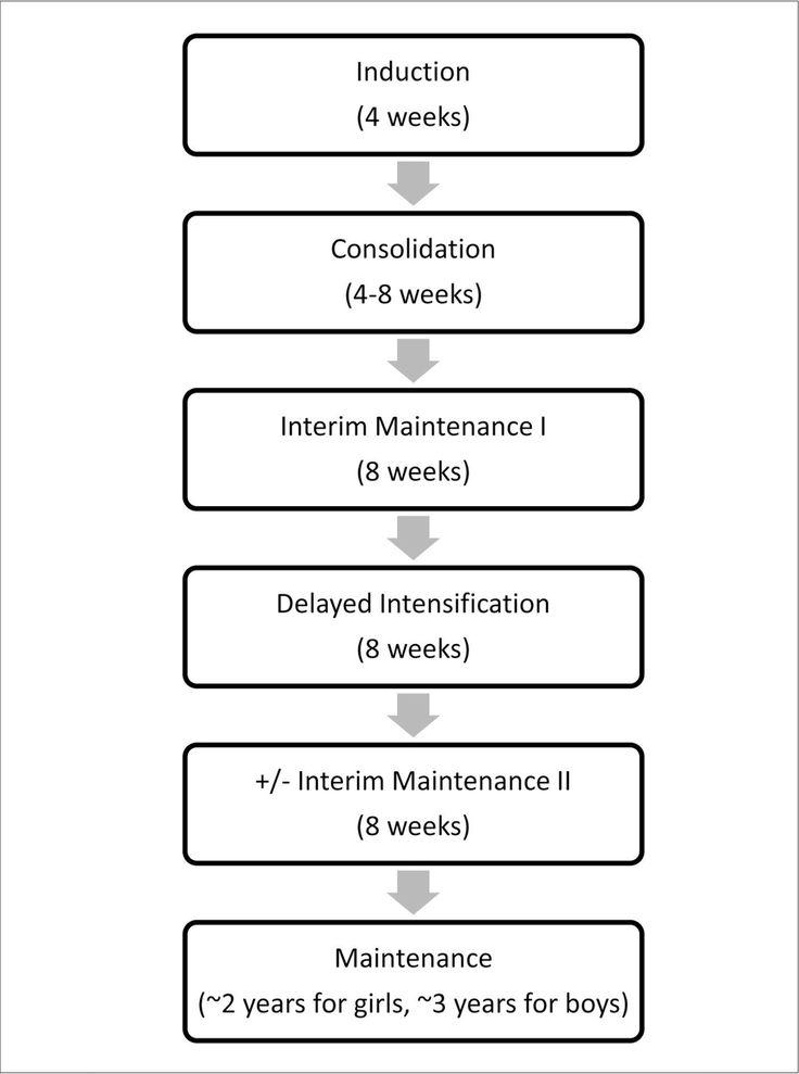 Acute Lymphoblastic Leukemia (ALL) treatment phases