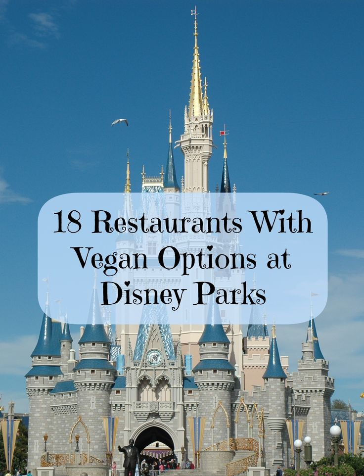 Vegan options at Disney Parks
