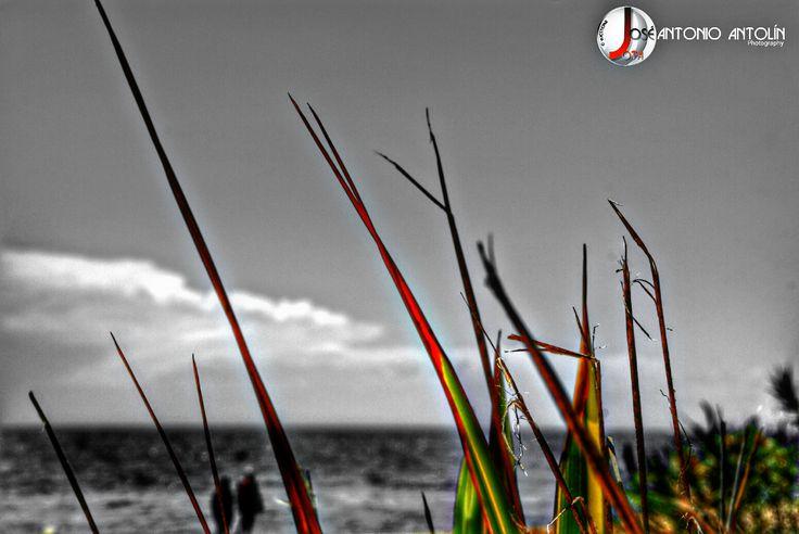 Yo pienso en tí. #colorsplash #selectivecolor · http://comcyl.com/yo-pienso-en-ti-colorsplash-selectivecolor/