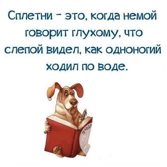 Фотографии Весёлые картинки - Мой Мир@Mail.ru