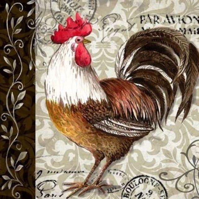 курицы и петухи знакомства