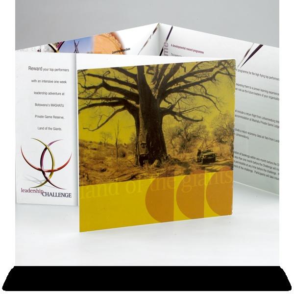 Leadership Challenge:   Corporate Brochure.