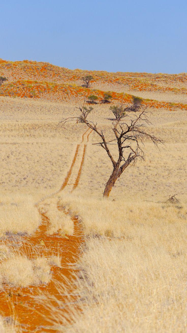 Weltevrede Guest Farm #Travel #Namibia #Self #drive #Sossusvlei Area