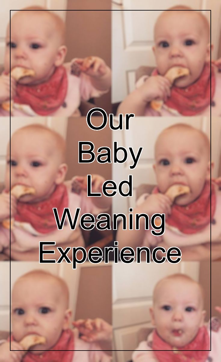 Baby Led Weaning is a topic that I can talk about forever more and it is the weaning experience I would highly recommend to any parent starting to … | Ivy & I …