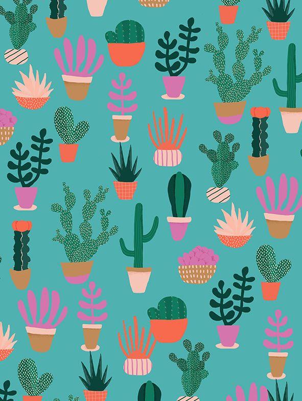 pattern | cactus illustration - Naomi Wilkinson