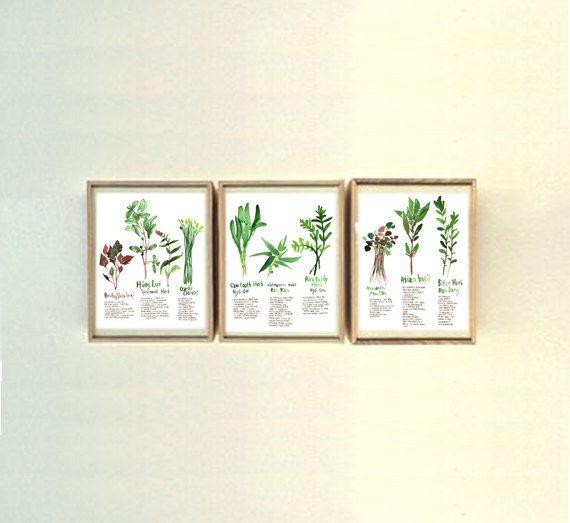 Set of 3 vietnamese herb prints 8X10 print by lucileskitchen