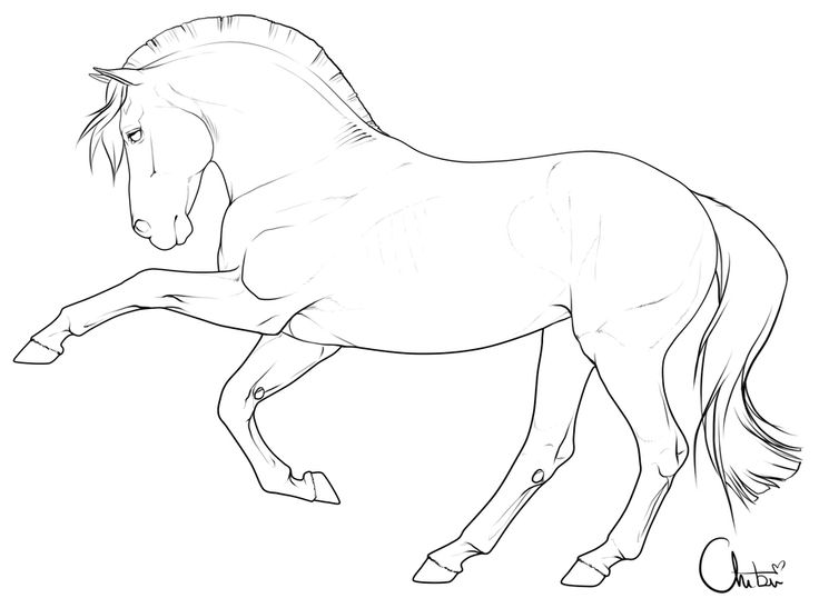 Free pony lineart by BH-Stables on @DeviantArt | Horse art ...