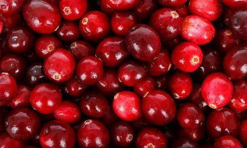 Rimedi naturali cistite: Cranberry, il mirtillo rosso americano
