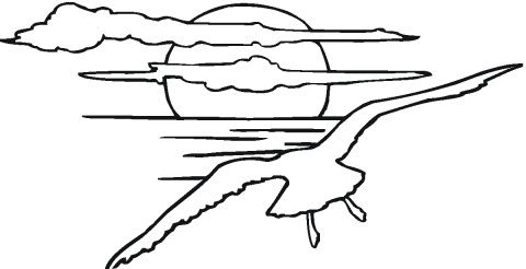 coloring images of sunsets Seagulls coloring pages