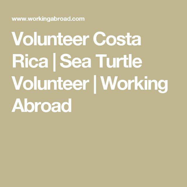Volunteer Costa Rica | Sea Turtle Volunteer | Working Abroad