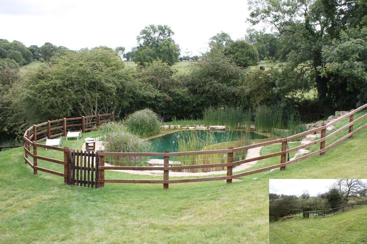 Swimming Pond Conversions from Ponds & Lakes. Natural pool