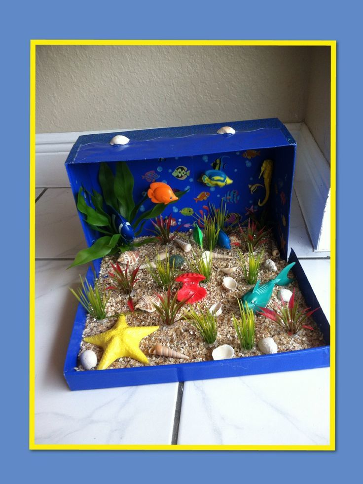 ocean habitat diorama ideas for kids | Ocean Ecosystem Diorama Ideas