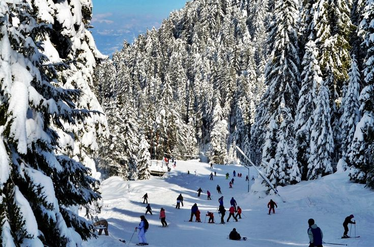 Bansko, the star of the Balkans. It is not a typical Bulgarian village, but a popular resort with excellent organization and low cost. Every year attracts
