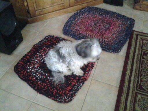 Doggy mats