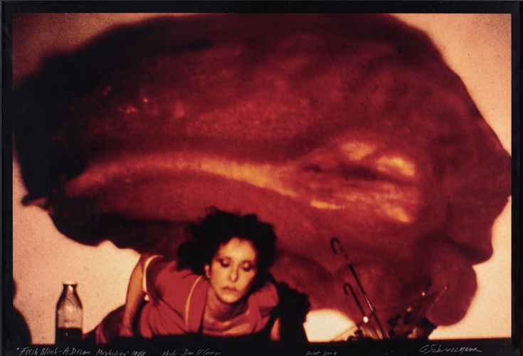 Carolee Schneemann, Fresh Blood – A Dream Morphology, 1983/2004, c-type print 117 x 166 m. Courtesy: P.P.O.W © Carolee Schneemann