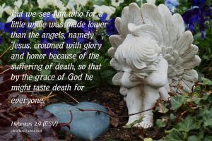Verse of the Day: Jesus Conquered Death - Hebrews 2:9