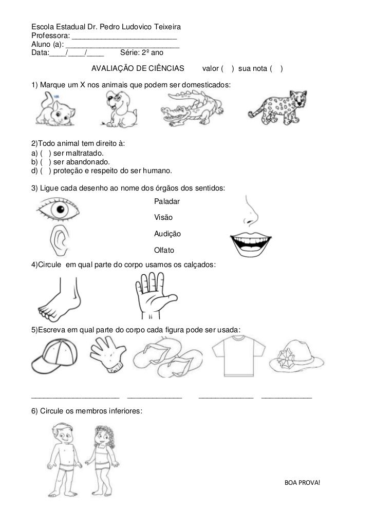 Top 168 best escola images on Pinterest | 1 year, Grammar and Kid  FD15