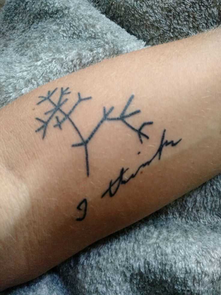 "Darwin's journal sketch of phylogenetic tree & ""I think"".  After all these years I finally got this tattoo."