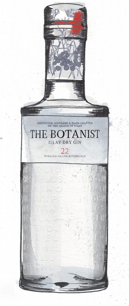 The Botanist Gin Bottle Watercolour Illustration. Click the 'visit' link to commission your own choice of gin illustrations
