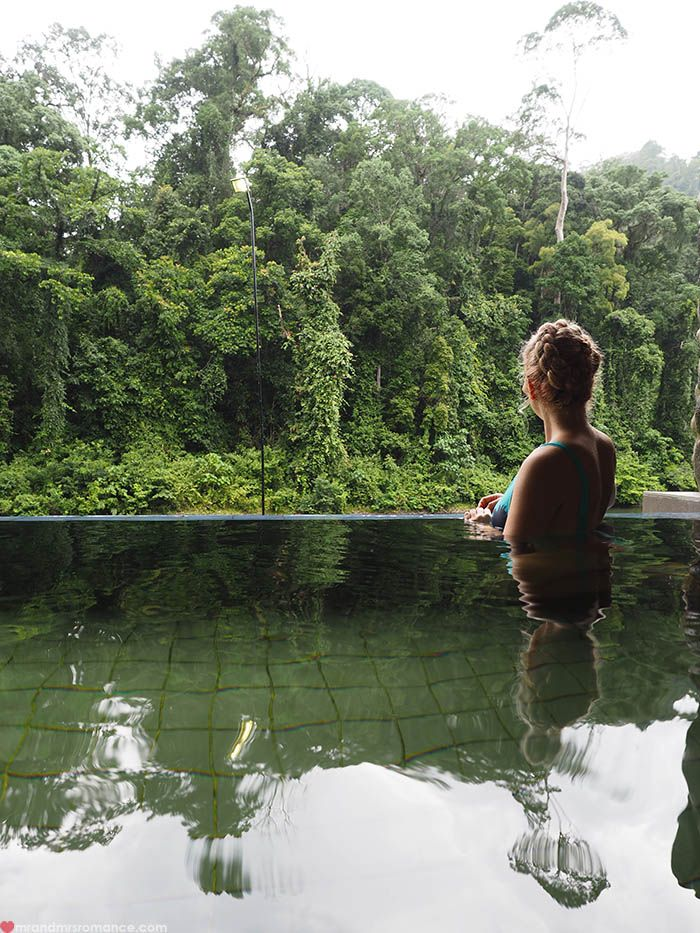 Welcome to the jungle – how to experience the Borneo rainforest, Danum Valley, Sabah
