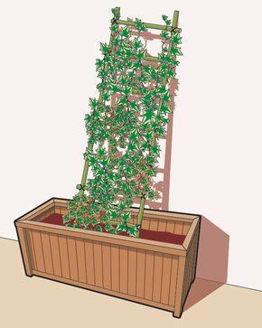 Oltre 25 fantastiche idee su fioriera su pinterest for Fioriera lara