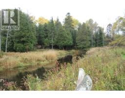LOT 19 STOKES BAY RD, NORTHERN BRUCE PENINSULA, Ontario   N0H2M0