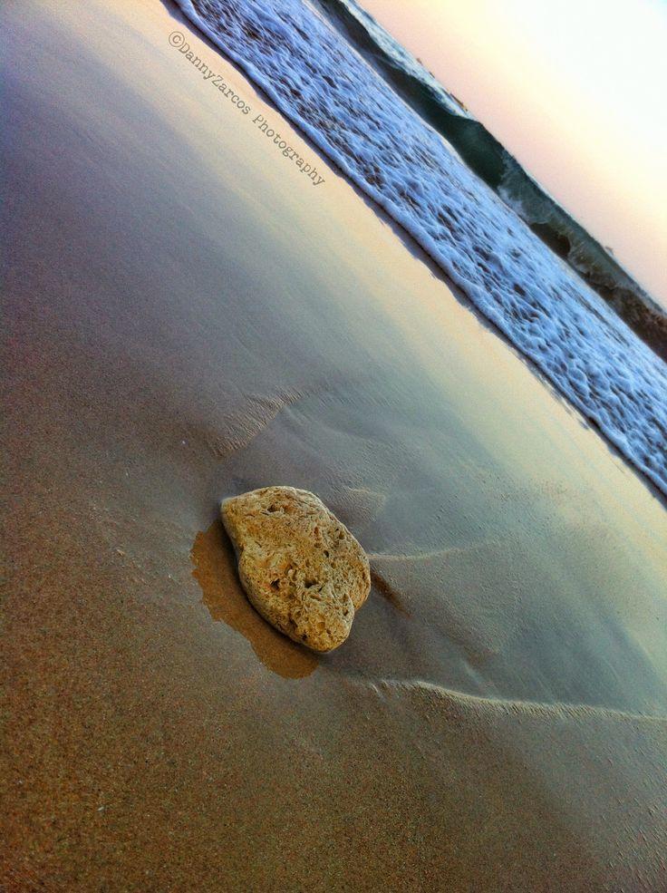 Things the sea brings...
