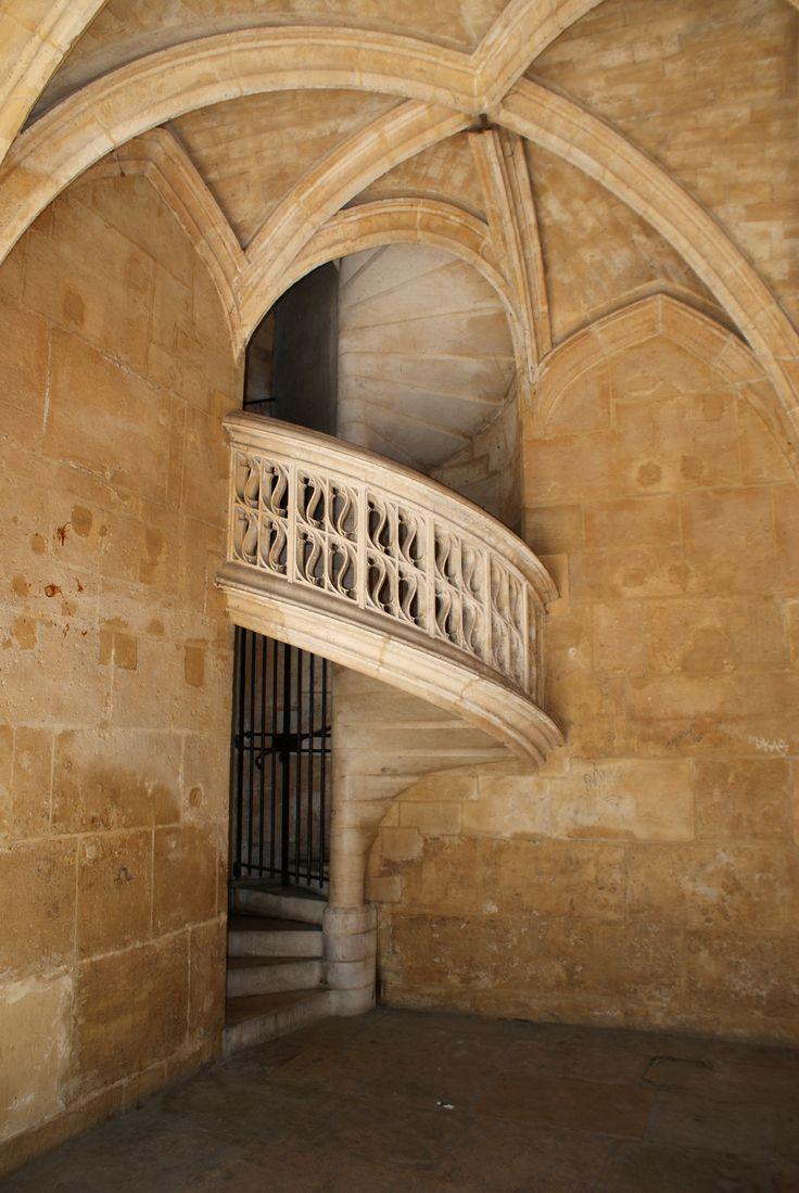 Escalier à vis de l'hôtel de Cluny Paris Les étages de l'hôtel de Cluny, sont desservi par 3 escalier à vis, ici l'extérieur d'un des escalier visible, dans les superbes jardins de l'hôtel.
