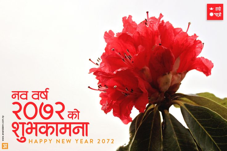 New Nepali Fonts: Happy Nepali New Year 2072 Greetings ecards