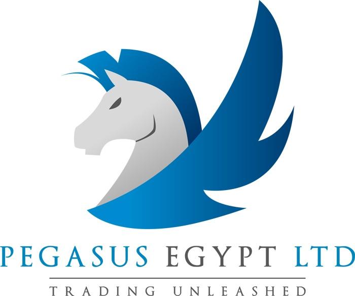 Pegasus Car Company