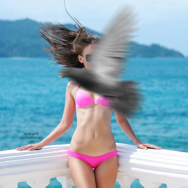 Flying Through!: Photos,  Two-Piec, Sunsets, Birds Bikinis, Bikinis Photobomb, Modern Metropolis, Flying Critter