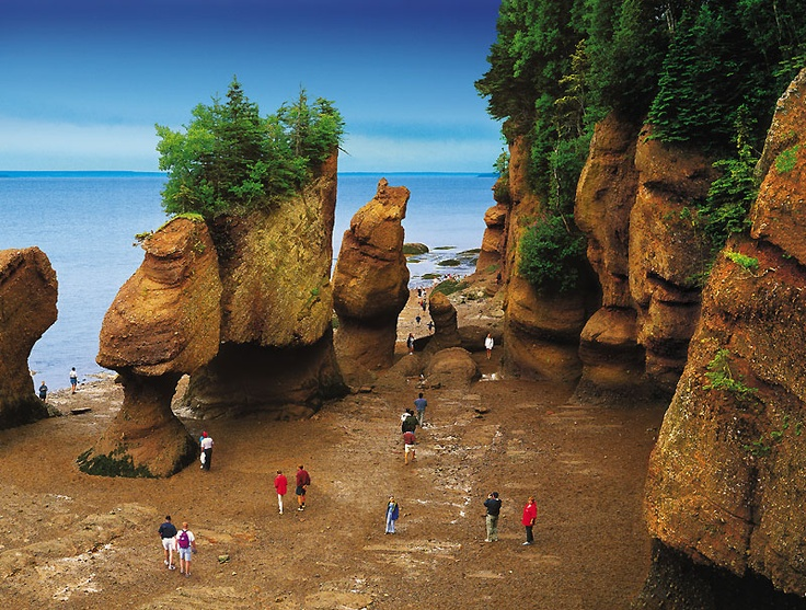 "The ""Empress of Inspiration"" aka: Elaine Shannon suggested,  Hopewell Rocks (Canada) as another location. Gotta admit, it looks great!"