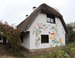 Украинские экопоселенцы бегут из городов, чтобы жить в глиняных домах с интернетом