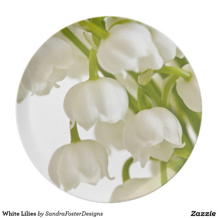 White Lilies Party Plate