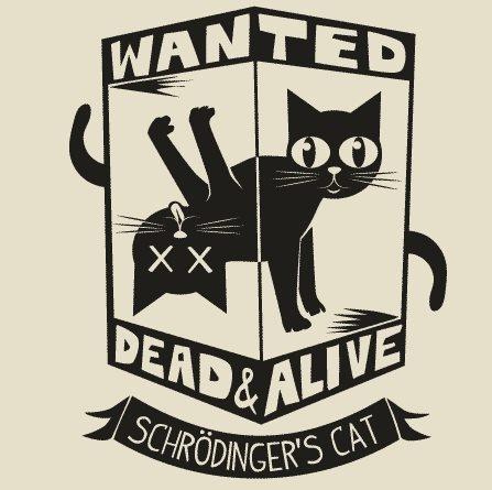 Schrodinger's Cat. | Nerd Stuff | Pinterest