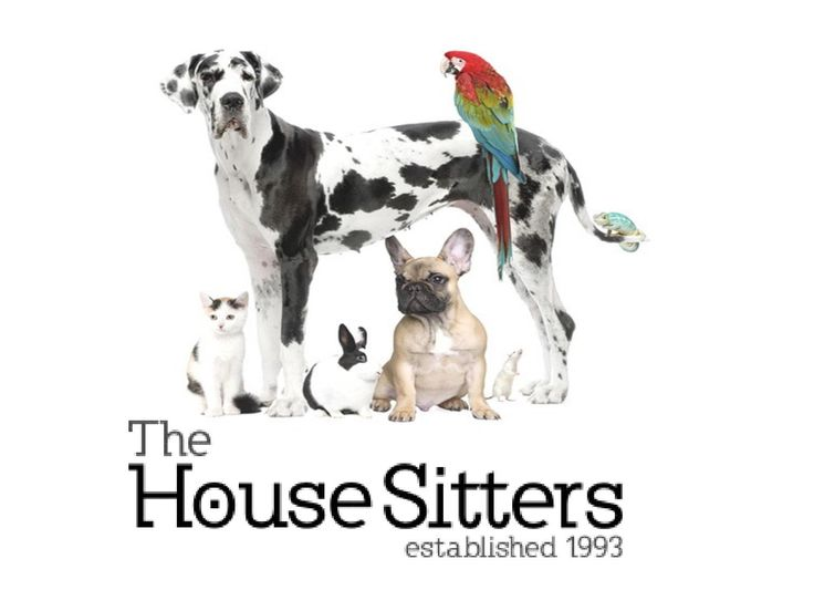 The Friendliest #HouseSitter for Your #Pets https://issuu.com/housesitters/docs/the_friendliest_house_sitter_for_yo/1 via @Issuu