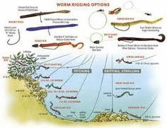 bass fishing tips - Google Search