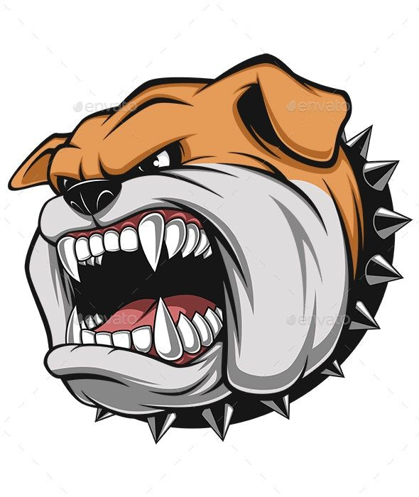 Angry Dog Anjing Pitbull Pitbull Anjing