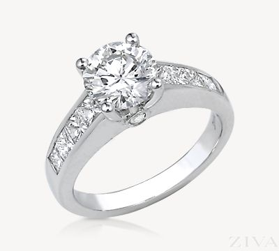 Stunning Cathedral Diamond Engagement Ring with Princess Cut Band