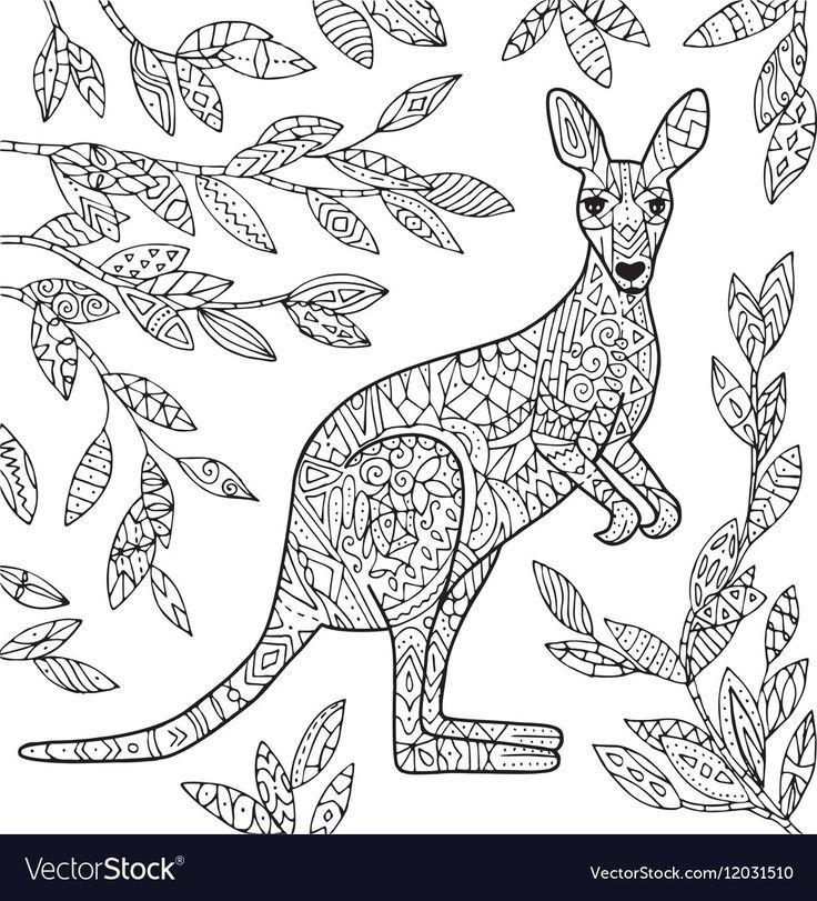 Kangaroos Drawing Mammals Kangaroo Illustration Kangaroo Drawing Kangaroo Art