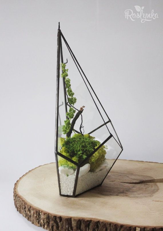 Handmade stained glass terrarium looks great in modern interiors. It may be a good present for you or surprise for your friends. Special kind of terrarium is made to be hang up on the wall. Back part is made with glass to save your wall clean. Perfectly looks with 2 or 3 items with