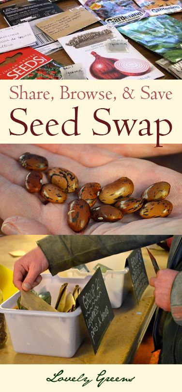 Annual Seed Swap & Gardeners' Social 2014