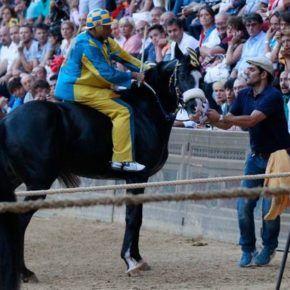 """Un cavallo ha detto 'no' al Paio di Siena. Il rifiuto di Tornasol ha ritardato l'avvio del Palio, la cosiddetta """"mossa"""", dioltre un'ora"""