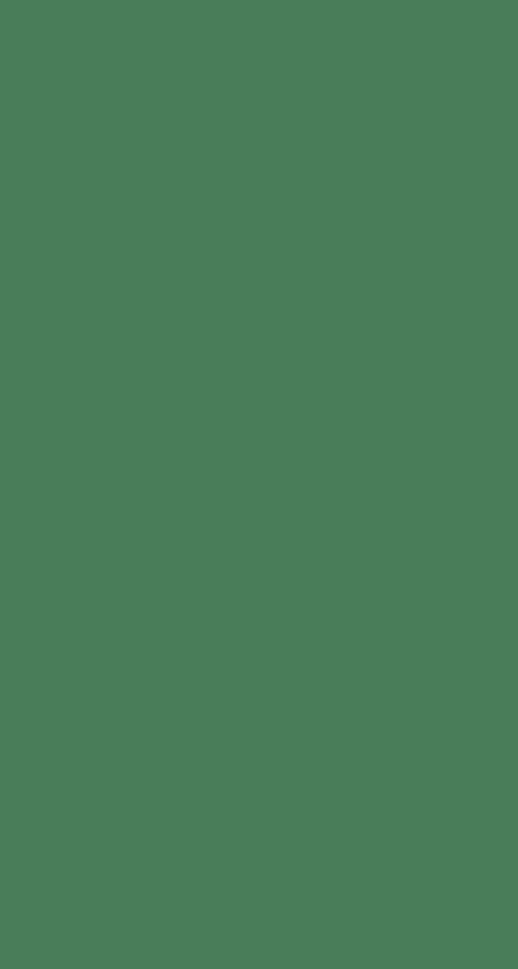 Plain Green - Simple background iPhone wallpaper @mobile9